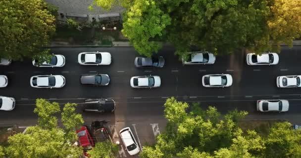 Letecká Drone letu shora dolů pohled na dálnici rušného špičce rušné jam. Letecký pohled na automobilovou křižovatky, provoz na vrcholu hodinu s auty na silnici, létat pod stromy.