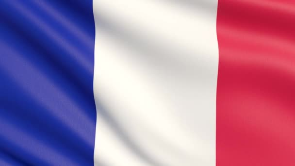 The flag of France. Waved highly detailed fabric texture.