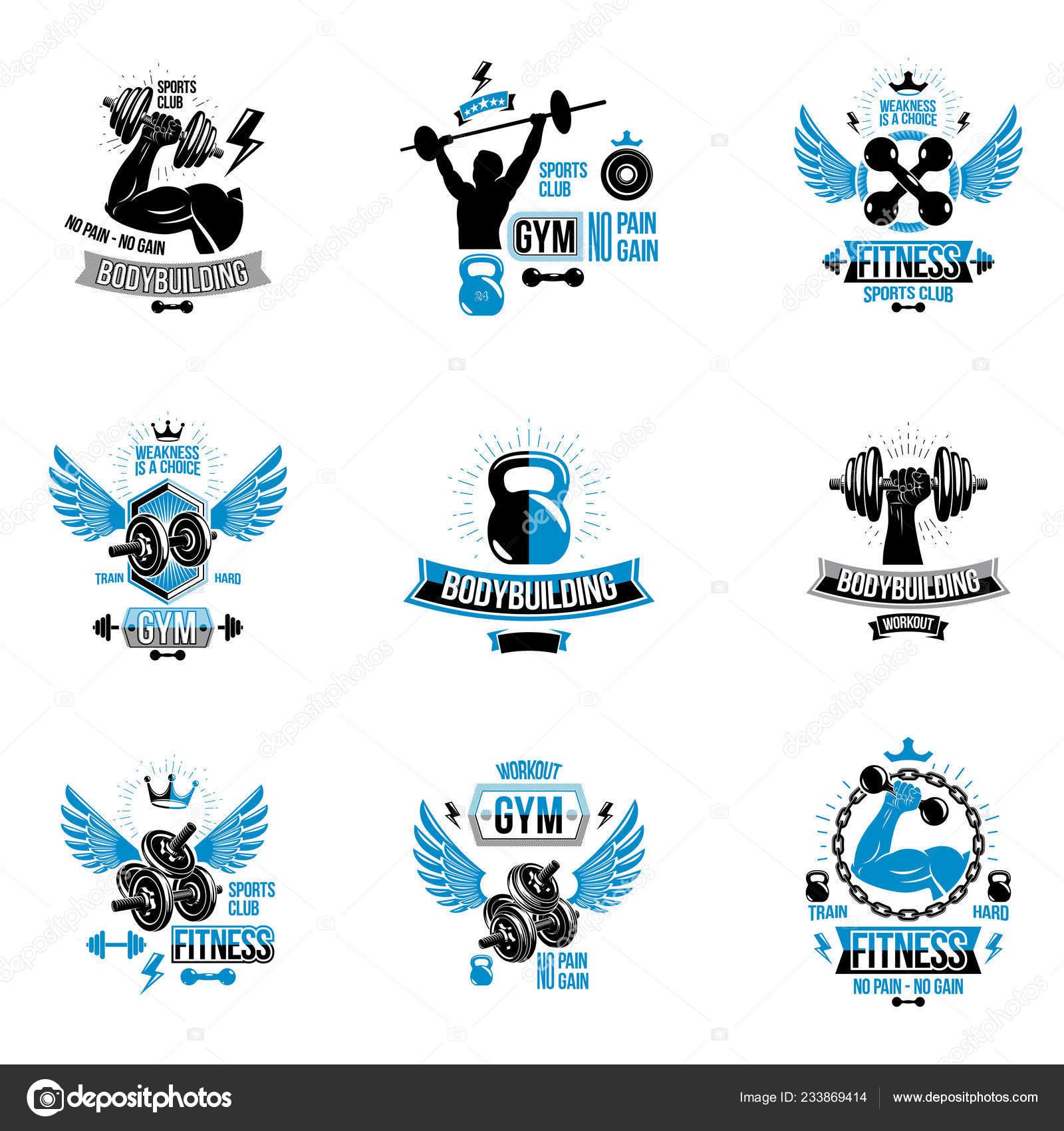 Conjunto Vector Emblemas Ajuste Adecuación Temática Posters
