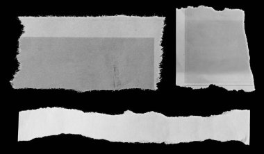 Three pieces of torn paper on black