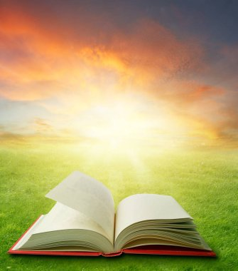 Open book in field