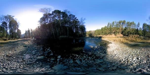 360 Vr virtuální realita divokých hor, borovice lesní a říční toky. Národní park, louka a sluneční paprsky