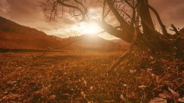 4 k Uhd Zeitraffer Tod Baum und Dürre-Katastrophe, trockenen gelben Gras und Boden mountian Landschaft mit Wolken und Sonnenstrahlen. Klimawandel, globale Erwärmung und Ökologiekonzept Problem. Horizontale