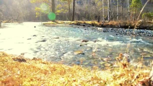 Dolly posuvník záběr stříkající vody v horské řece poblíž lesa. Mokré skály a sluneční paprsky. Vodorovný stálý pohyb.