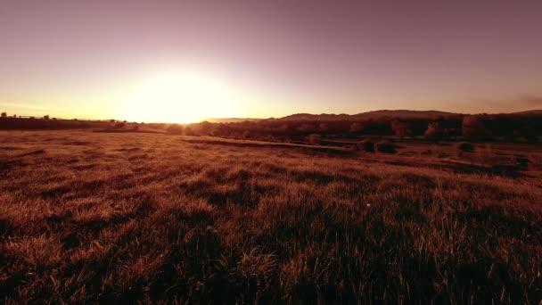 4 k Uhd mountain meadow timelapse v létě. Oblaka, stromy, zelená tráva a sluneční paprsky hnutí.