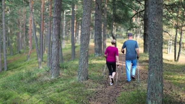 active seniors doing nordic walking in the woods