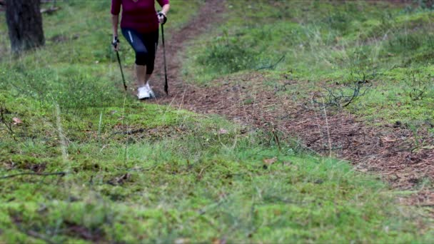 woman doing nordic walking on the forest trail