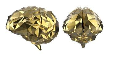 Golden polygonal brain