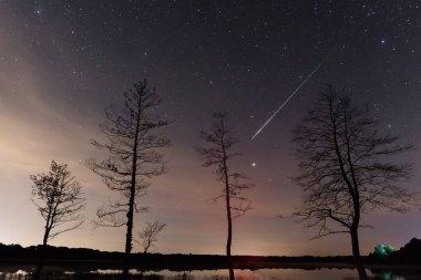 Perseid meteor streak in the night sky