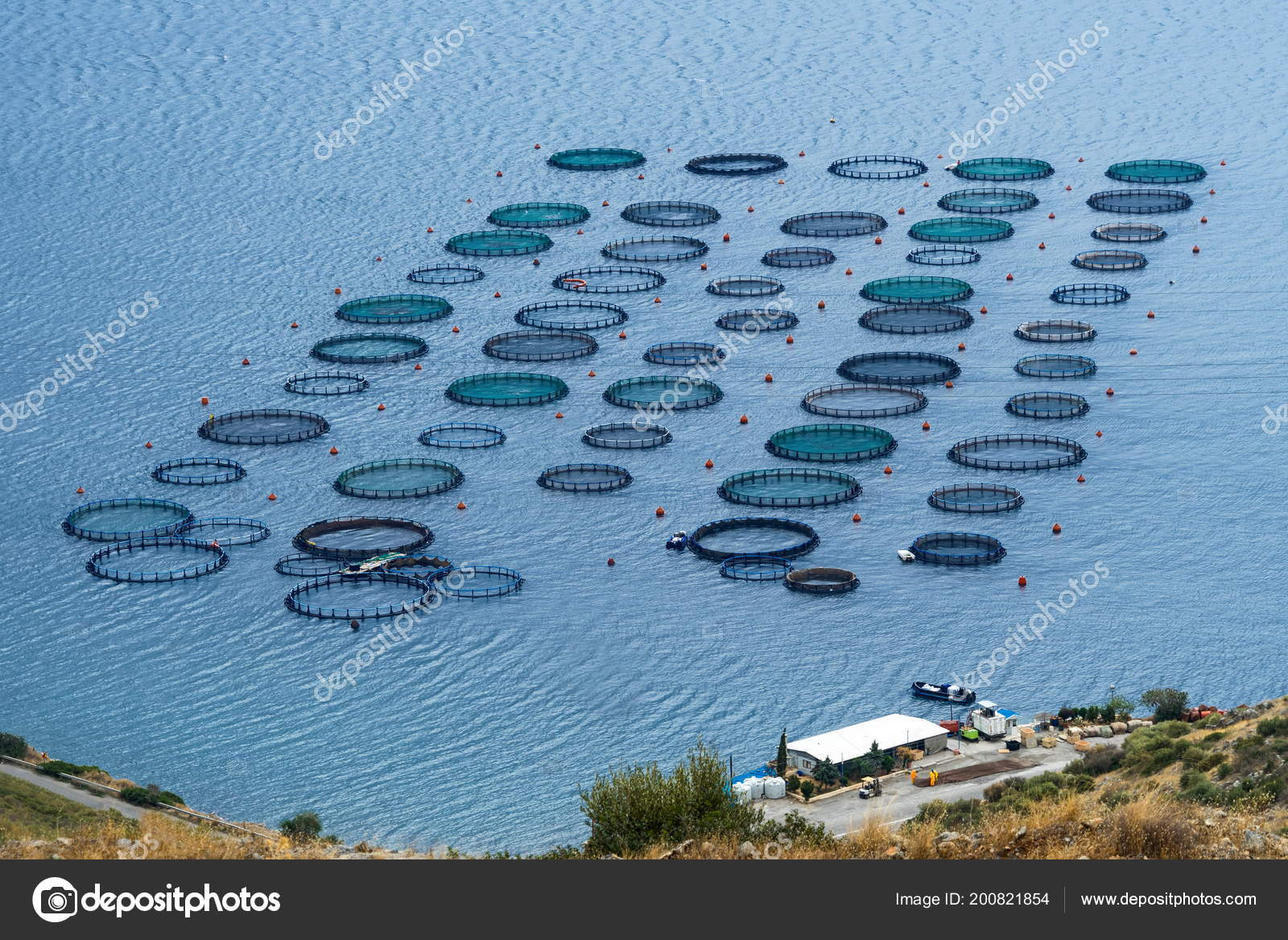 Fish Farming Tanks Amarynthos Euboea Greece — Stock Photo