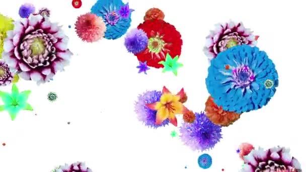 generované animace květin a listů lilií, zinnia dahlias na bílém pozadí. změna velikosti.