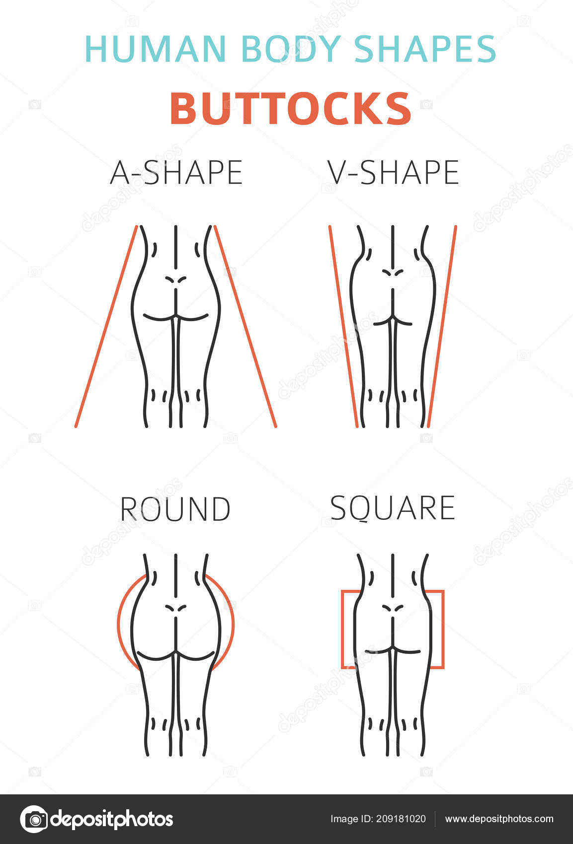 Human body shapes woman buttocks types set vector illustration human body shapes woman buttocks types set vector illustration vetores de stock ccuart Image collections