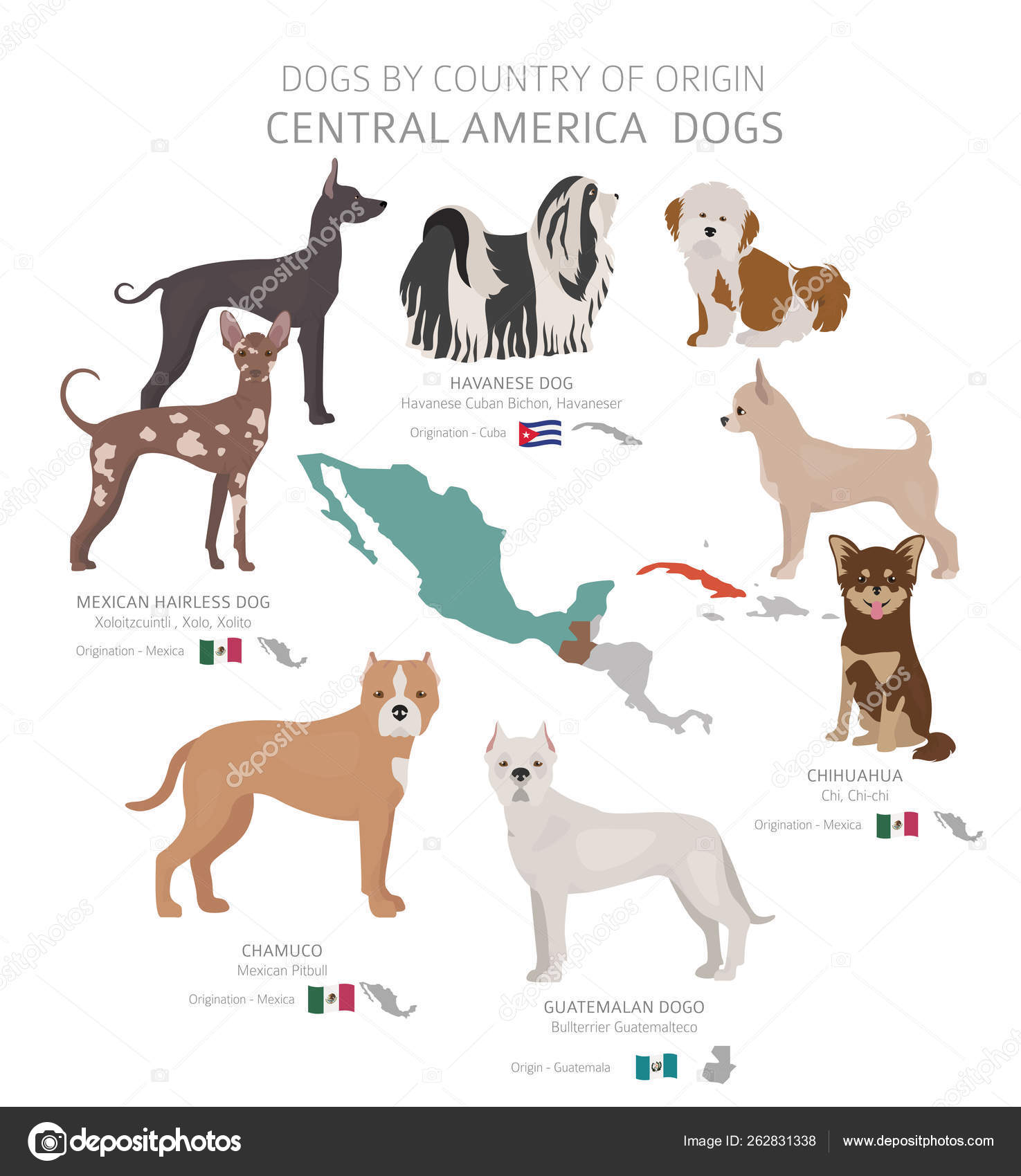 Dogs by country of origin  Central American dog breeds  Shepherd