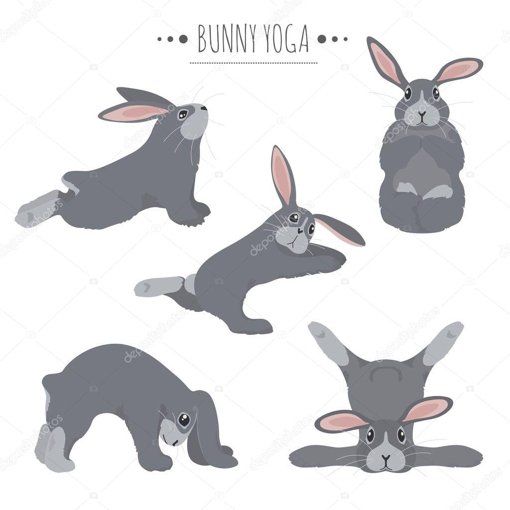 Downward Dog Yoga Rabbit