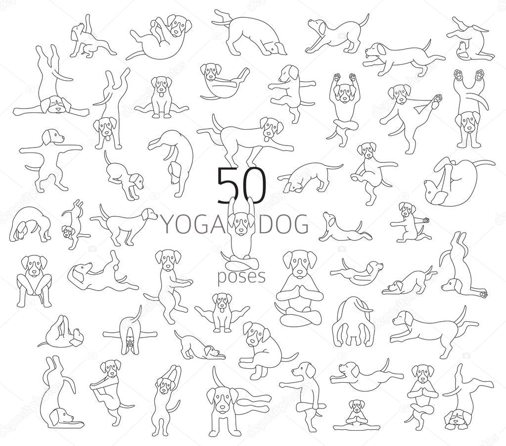 Yoga Dogs Poses And Exercises Doing Clipart Funny Cartoon Simple Linear Poster Design Vector Illustration Premium Vector In Adobe Illustrator Ai Ai Format Encapsulated Postscript Eps Eps Format