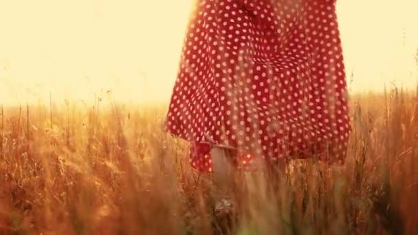 rouge en vidéo plan coucher nature en robe du fille jeune le marchant Jeune main au soleil champ gros aux ralenti avec jambes fille de pré sur herbe verte qO5ct