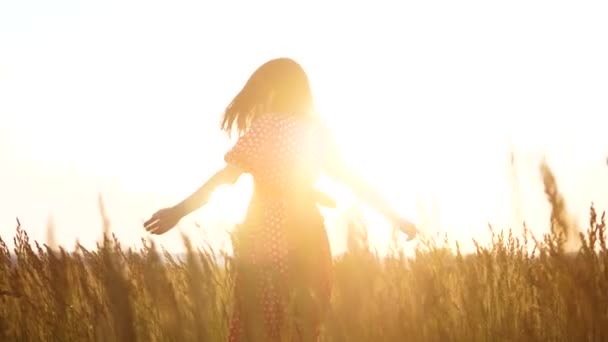 slow motion video. beautiful girl whirls in the field hands in the hand silhouette at sunset sunlight. woman concept freedom joy happiness travel lifestyle