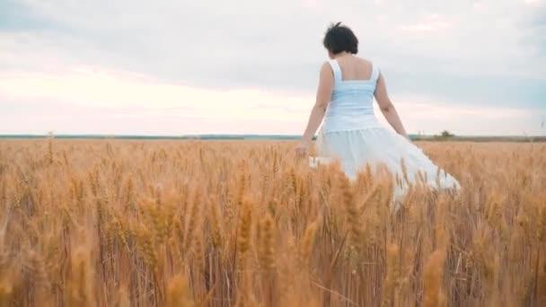 plus size fashion model in Zeitlupe video walking white dress on field wheat. Lifestyle dicke Frau in der Natur auf dem Feld Gras blüht Sommer. Landwirtschaft übergewichtigen weiblichen Körper. volle Mädchenlänge