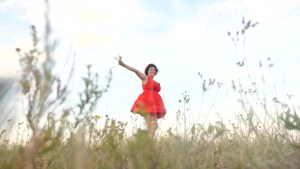 Plusz méretű divat modell a slow motion videót séta a füvön. kövér nő a természet, fű mező virág nyáron. túlsúlyos a női test. teljes lány hossza portré jellegű életmód szabadsága