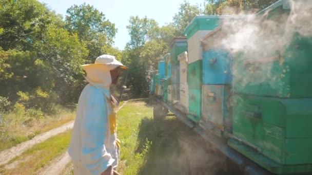 méh-készítő méhész ember dolgozik az életmód füst cső csipogó dohányos eszköz riasztására rossz méhek. Slow motion videót. méhészet. méhészeti fogalmat méh mezőgazdaság