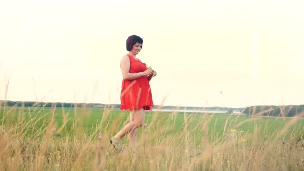 Plus velikost modelka zpomalené video chůze po trávě. tlustá žena na přírodu v létě květy pole trávy, nadváhou životní styl ženské tělo. dívka plná délka portrét přírodní koncept