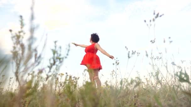 Plusz méretű divat modell a slow motion videót séta a füvön. kövér nő a természet, fű mező virág nyáron. túlsúlyos a női test. teljes lány hossza portré jellegű szabadság életmód