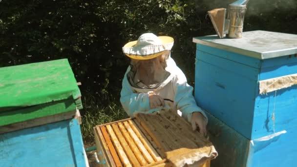 der Imker, der in der Bienenhaltung arbeitet, fliegt Schwarm mehrfarbiger Bienenstöcke in Zeitlupe Video-Lifestyle. Imker Imker arbeitet an einer Pfeife Piepser Holz Bienenstöcke Raucher-Gerät zur Abwehr