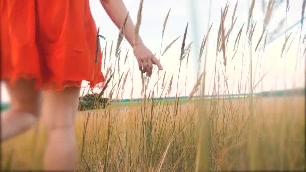 Plus Size Mode-Modell in Slow-Motion-video Fuß auf dem Rasen. Fette Frau auf die Natur im Bereich Rasen Blumen Sommer, Übergewicht Frauenkörper. voller Mädchen-Lifestyle-Länge-Porträt-Natur-Konzept