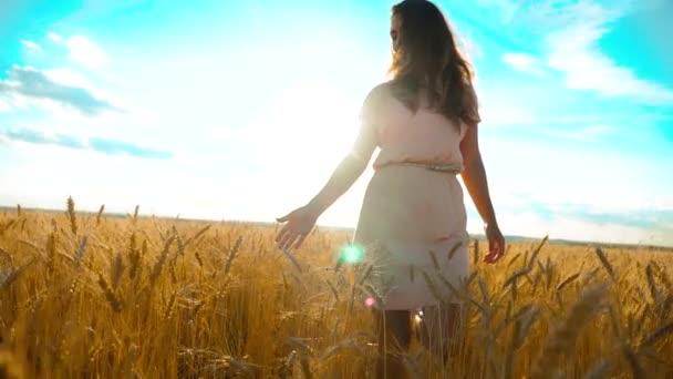 Mädchen läuft in Zeitlupe am Weizenfeld entlang. schöne Mädchen in weißem Kleid läuft die Natur Freiheit Glück Hände zur Seite auf dem Feld bei Sonnenuntergang Licht Lifestyle und der blaue Himmel