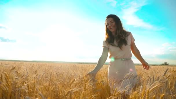 girl is walking along the wheat field nature slow motion video. Beautiful girl lifestyle in white dress running nature freedom happiness hands to the side on field at sunset light and the blue sky