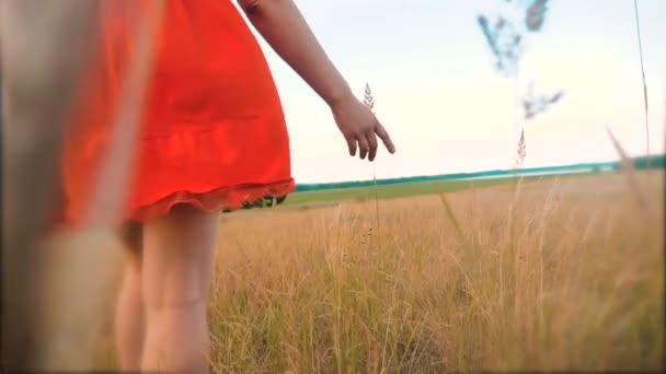 Plus Size Mode-Modell in Slow-Motion-video Fuß auf dem Rasen. Fette Frau auf die Natur im Bereich Rasen Blumen Sommer, Übergewicht Frauenkörper. Lifestyle voller Mädchen Länge Porträt Natur-Konzept