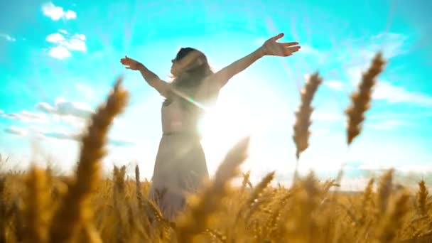 Beauty girl outdoors enjoying nature wheat field slow motion video. Beautiful girl in white dress running nature freedom happiness hands to the side on field at sunset light and the blue sky