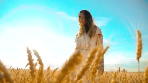 girl is walking along the wheat field nature slow motion video. Beautiful girl in white dress running nature freedom happiness hands lifestyle to the side on field at sunset light and the blue sky