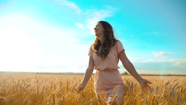 girl is walking along the wheat field nature slow motion video. Beautiful girl in white dress lifestyle running nature freedom happiness hands to the side on field at sunset light and the blue sky