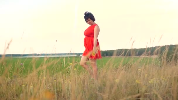 Plus velikost modelka zpomalené video chůze po trávě. tlustá žena na přírodu v létě květiny trávy životní styl pole. nadváhou ženské tělo. dívka plná délka portrét přírodní koncept