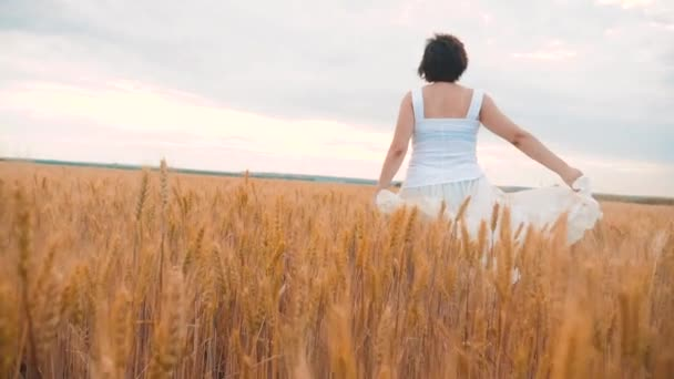 Plus size fashion model in slow motion video walking white dress on field wheat. fat woman lifestyle on nature in the field grass flowers summer. agriculture overweight female body. full girl length