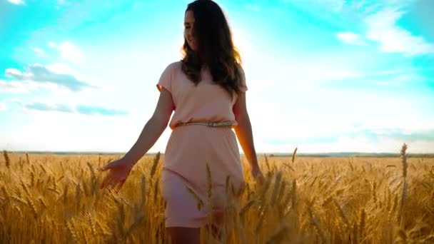 girl is walking along the wheat field nature slow motion video. Beautiful girl in white dress running nature freedom happiness hands to the side on field at sunset lifestyle light and the blue sky