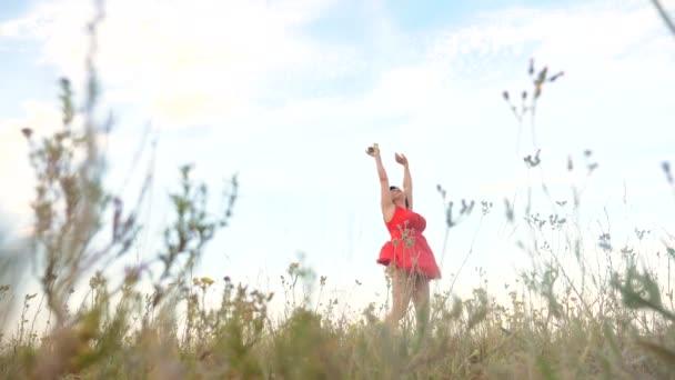 Plusz méretű divat modell a slow motion videót séta a füvön. kövér nő a természet, fű mező virág nyáron. női életmód test túlsúlyos. teljes lány hossza portré jellegű szabadsága