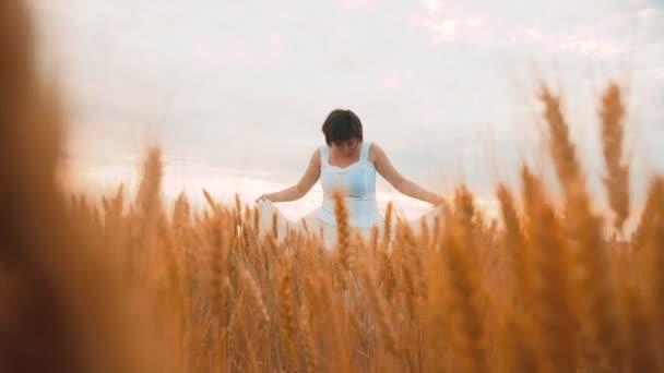 Plus Size Mode-Modell in Slow-Motion-video Fuß weißes Kleid auf Feld Weizen. Fette Frau auf Natur im Bereich Rasen Blumen Sommer. Landwirtschaft Übergewicht Frauenkörper. volle Mädchen Länge Lebensstil