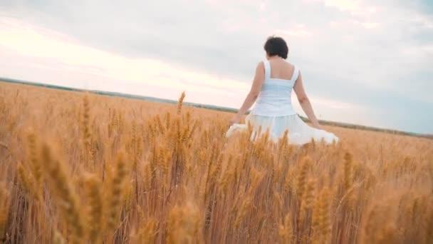 Plus Size Mode-Modell in Slow-Motion-video Fuß weißes Kleid auf Feld Weizen. Fett Lebensstil Frau auf Natur im Bereich Rasen Blumen Sommer. Landwirtschaft Übergewicht Frauenkörper. volle Mädchen Länge