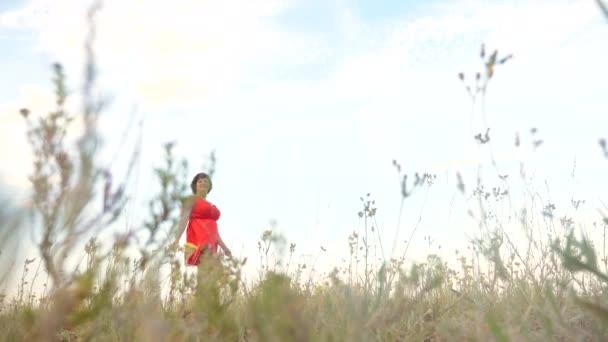 Plus velikost modelka zpomalené video chůze po trávě. tlustá žena na přírodu v létě květy pole trávy. nadváhou ženské tělo. životní styl plný dívka délka portrét příroda svoboda