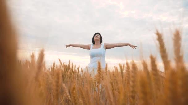 Plusz méretű divat modell a slow motion videót séta fehér ruhában mező búza. kövér nő a természet, fű mező virág nyáron. mezőgazdasági túlsúlyos női test. teljes lány életmód hossza
