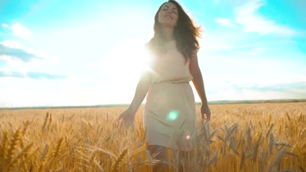 girl is walking along the wheat field nature slow motion video. Beautiful girl in white dress running nature freedom happiness hands to the side lifestyle on field at sunset light and the blue sky