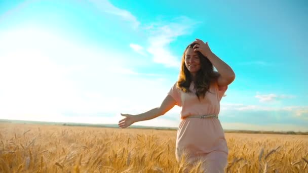 girl is walking along the wheat field nature slow motion video. Beautiful girl in white dress running lifestyle nature freedom happiness hands to the side on field at sunset light and the blue sky