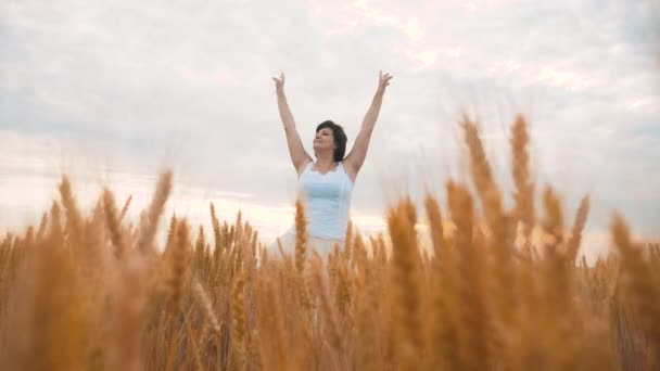 Plusz méretű divat modell a slow motion videót séta fehér ruhában mező búza. kövér nő a természet, fű mező virág nyáron. mezőgazdasági túlsúlyos női test. életmód lány teljes hosszúságú