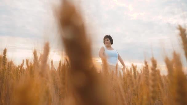 Plus Size Mode-Modell in Slow-Motion-video Fuß weißes Kleid auf Feld Weizen. Fette Frau auf Natur im Bereich Rasen Blumen Sommer. Landwirtschaft mit Übergewicht Lebensstil Frauenkörper. volle Mädchen Länge