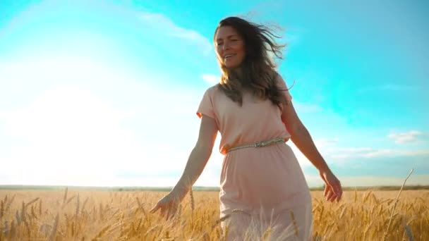 girl is walking along the wheat field nature slow motion video. Beautiful girl in white dress running nature freedom happiness lifestyle hands to the side on field at sunset light and the blue sky