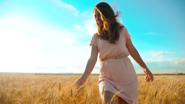 girl is walking along the wheat field nature slow motion video. Beautiful girl in white dress running nature freedom lifestyle happiness hands to the side on field at sunset light and the blue sky