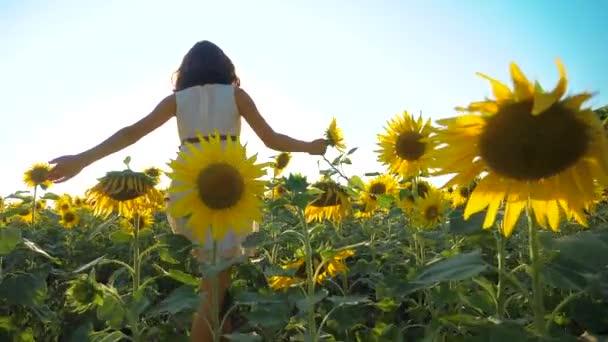 Boldog lány boldog szabadon szalad a mezőn, a napraforgó. Slow motion videót. illatos nagy napraforgó nyári mező. Örömére egy kellemes illata. Nyári szünet. boldogság koncepciója