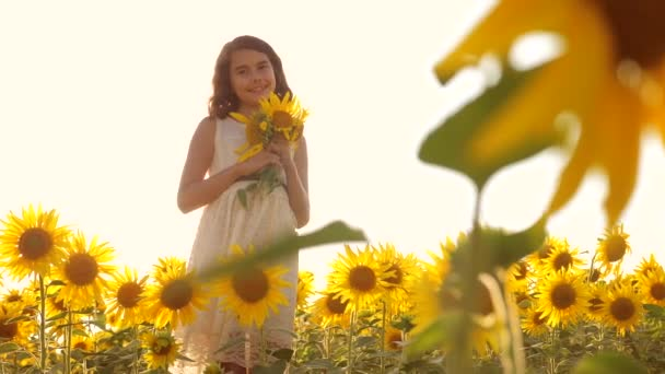 Happy little girl teen smelling a sunflower on the field in summer. slow motion video. girl teenager standing in a field with sunflowers holding flowers at sunset sunlight. lifestyle girl childhood